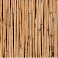 TAP - 10597 Tapeta Bamboo 90cm x 15m