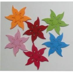 CFA-019  Kvety