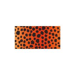 FOL-5764  Gepard papier 50x70cm 300g papier