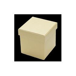 PEN-7560 Kartonové boxy 2ks 15x15x15cm